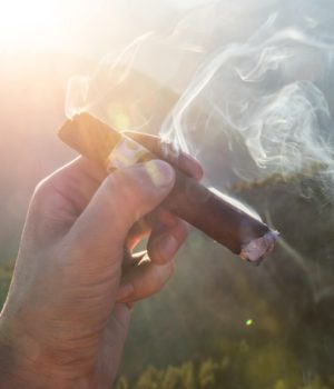sigaren cigars kopen antwerpen
